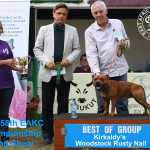 Best of Terrier Group at the 158th EAKC Championship Dog Show