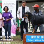 Best of Working Group at the 158th EAKC Championship Dog Show