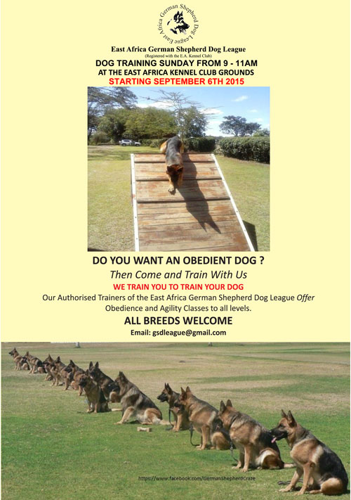 GSD-Training-poster