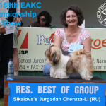 Reserve Best of Utilty Group at the 158th EAKC Championship Dog Show