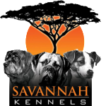 Savannah-Kennels