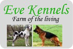 eve kennels