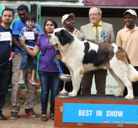 Deepa Galot wins BEST in SHOW